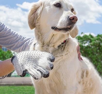 luva para escovar e massajar animais de estimação proftc