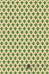 Rolo deco motivos pitti grun 0.45x15m ref.200-2471