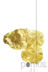 Pétala cx.288un dourada ref.20.53176