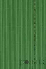 Cartolina 200x70cm ondulor em rolo verde