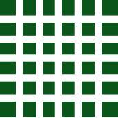 Verde Claro/Branco (205)